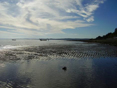 Reloncaví Estuary Puerto Montt Chile