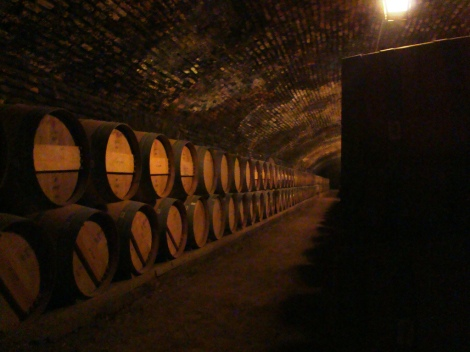 Wine Cellar Chile