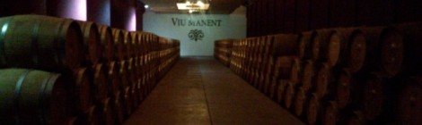 Cellar at Viu Manent winery Chile