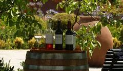 Aquitania vinos Chile
