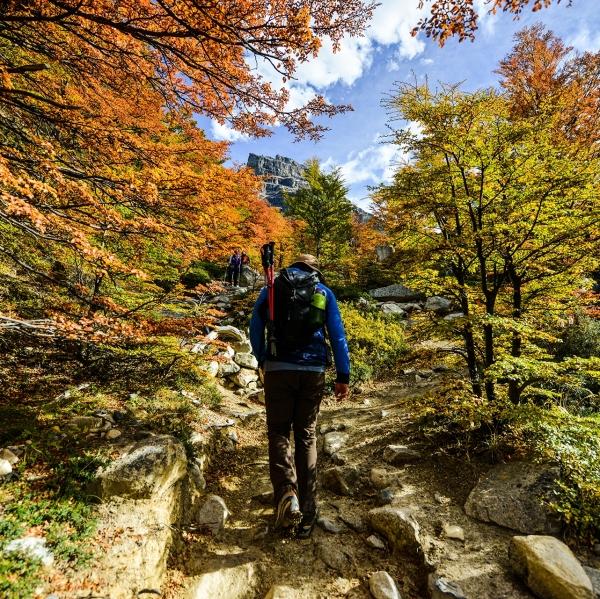 EXP-Walking_&_Hiking